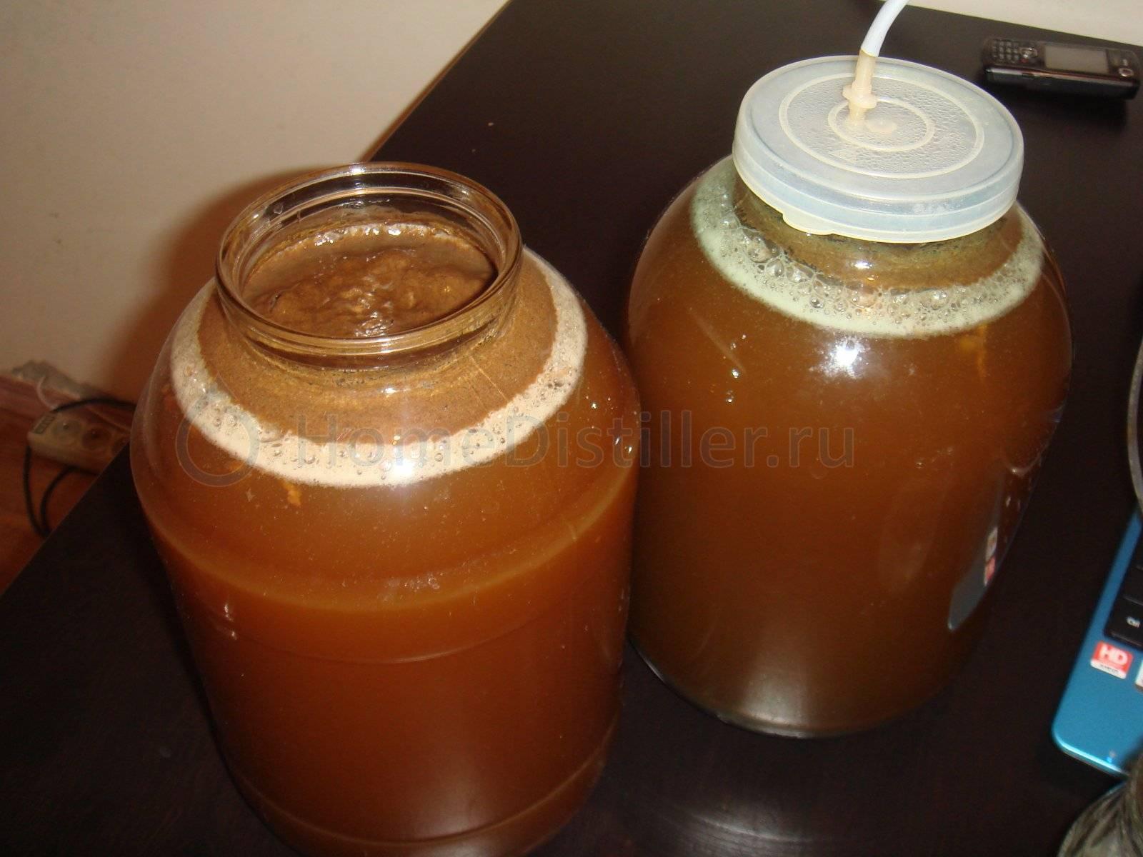 Пиво из квасного сусла: рецепты с хмелем, цикорием и ванилином, как сделать в домашних условиях