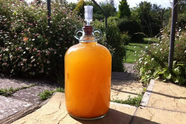 6 простых рецептов приготовления апельсинового вина в домашних условиях