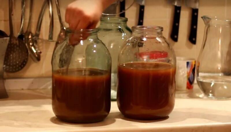 Как приготовить кальвадос в домашних условиях из яблок?