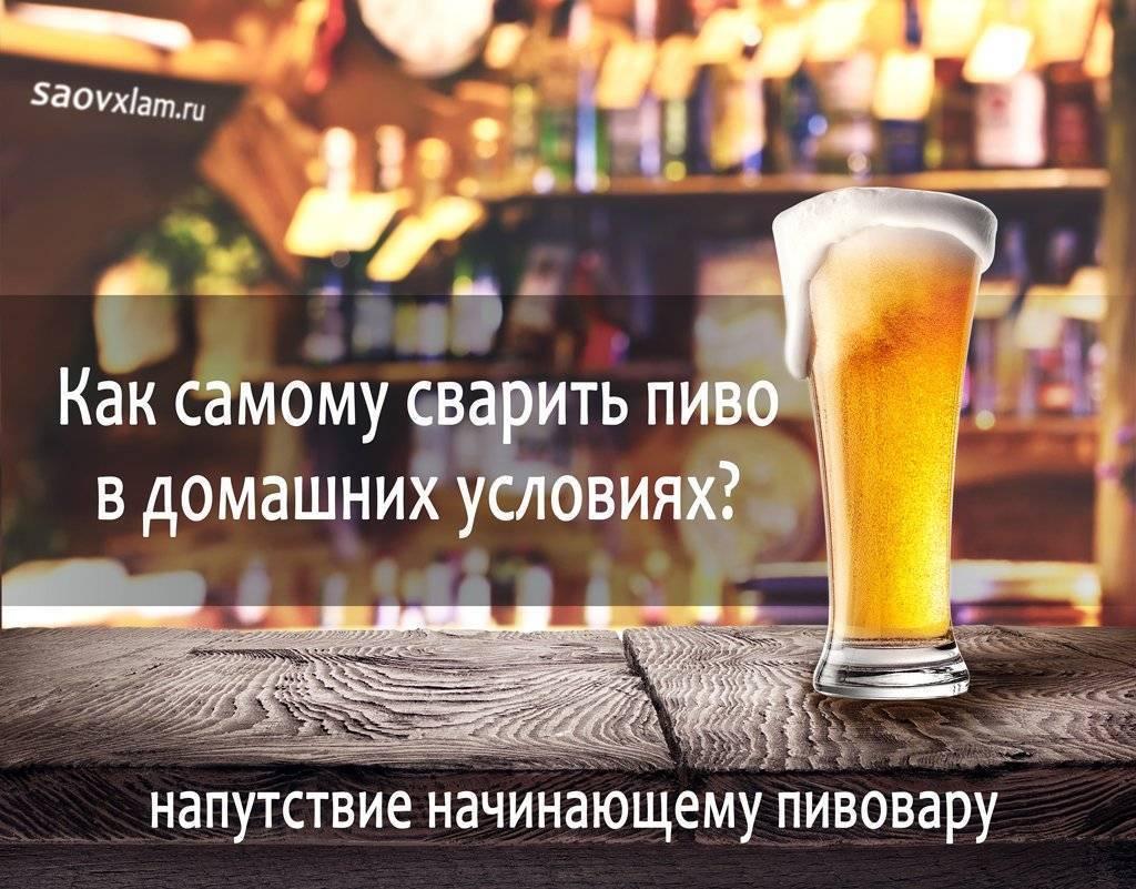 Варим домашнее безалкогольное пиво - вкусные рецепты от receptpizza.ru