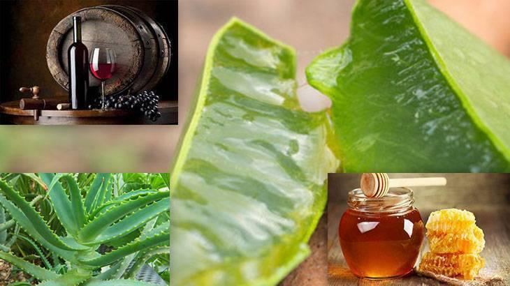 Рецепты настойки алоэ с медом на спирту и на водке