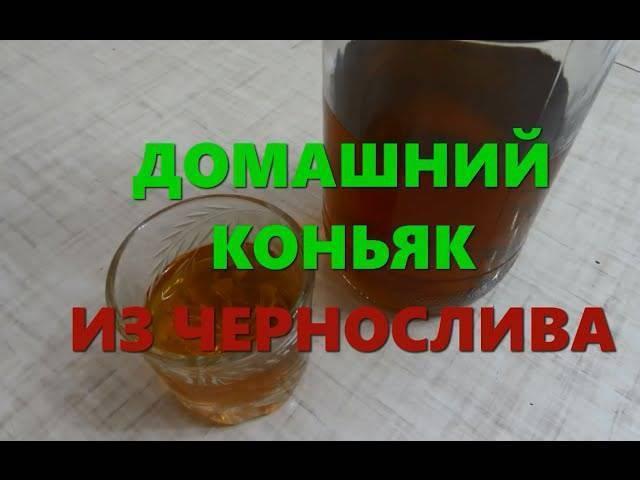 Выбор сырья и рецепты приготовления самогона на черносливе
