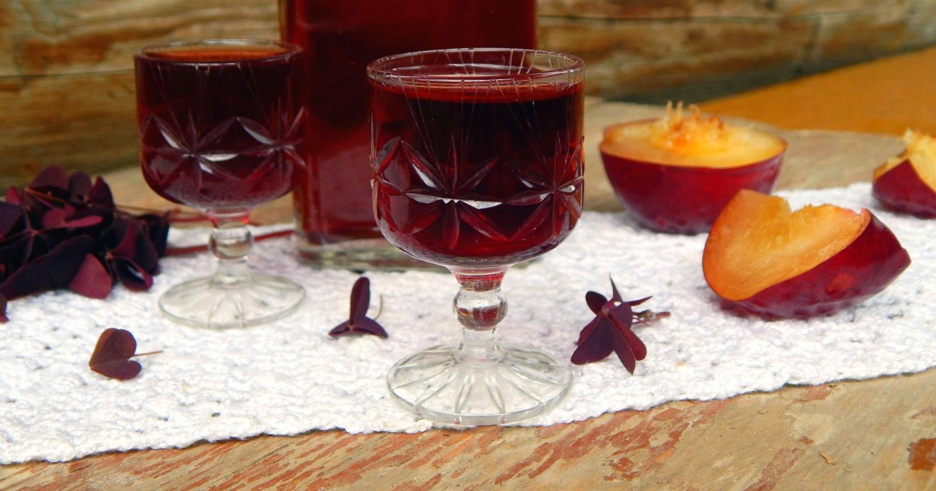 Сливянка: 110 фото простых рецептов приготовления вкусного напитка из сливы