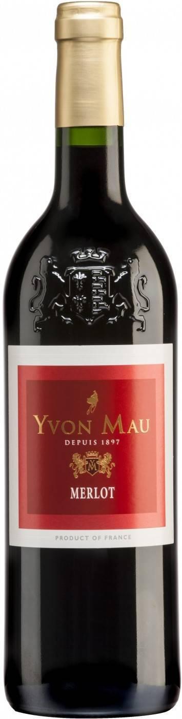 Красное сухое вино мерло: разновидности вина, сорт винограда