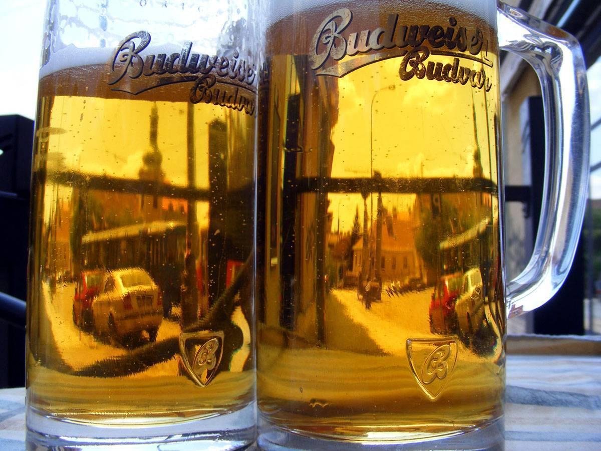 Чешское пиво: лучшие марки, сорта, названия, рейтинг напитков из чехии в россии