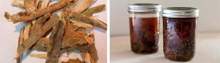 Лечебные свойства коры осины, применение настойки и отвара, противопоказания | здорова и красива