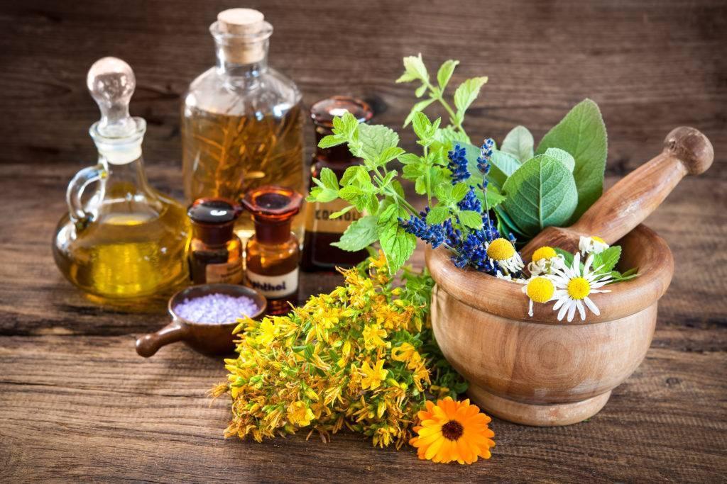 Как действуют травы от алкоголизма: применение и простые рецепты