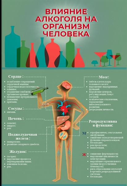 Как алкоголь влияет на мышцы и стоит ли его пить во время тренировок