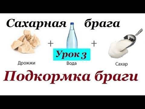 Подкормка браги сахарного самогона – 4 способа помочь дрожжам