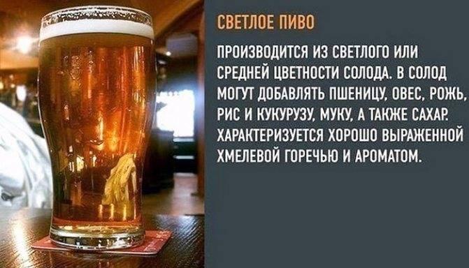 Какое пиво менее калорийное