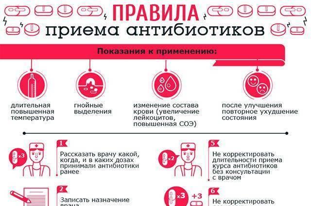Правила употребления алкоголя при лечении антибиотиками