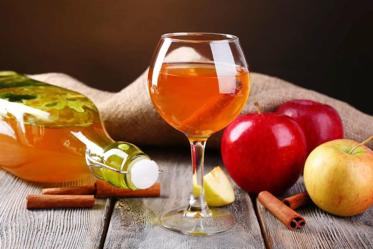 Вино из калины: пошаговое приготовление ароматного напиткав домашних условиях - простой рецепт, правила употребления | mosspravki.ru