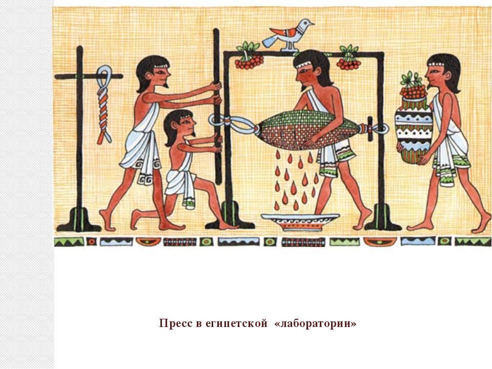 История алкоголя и человечества