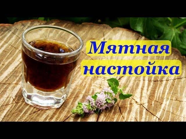 Мятный ликёр домашний на поварёнок.ру