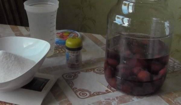 Сливянка в домашних условиях. простой рецепт с водкой и без, дрожжами, косточками, как приготовить на спирту