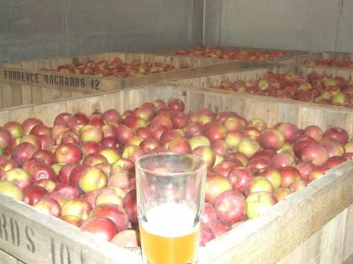Что такое сидр? рецепт яблочного вина в домашних условиях