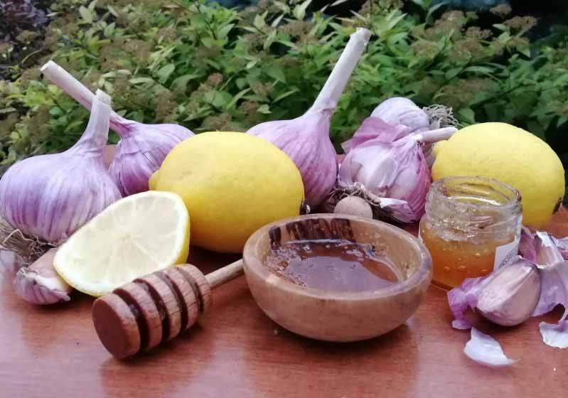 Мед, чеснок и лимон для чистки сосудов: отзывы и рецепты