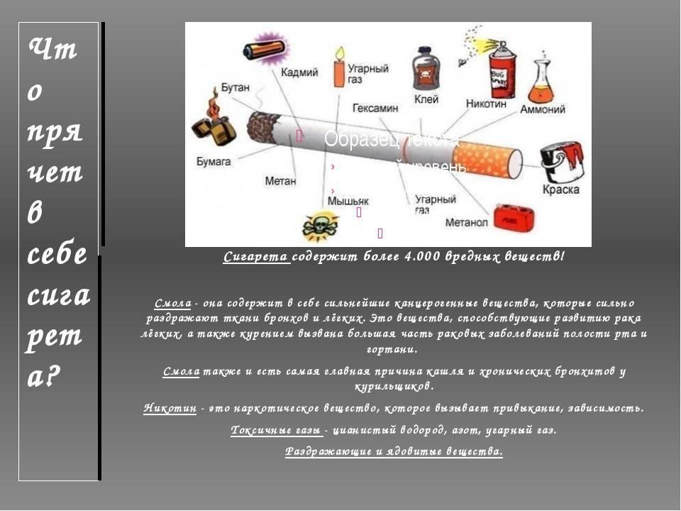 Сколько никотина содержится в одной сигарете: пробуем разобраться