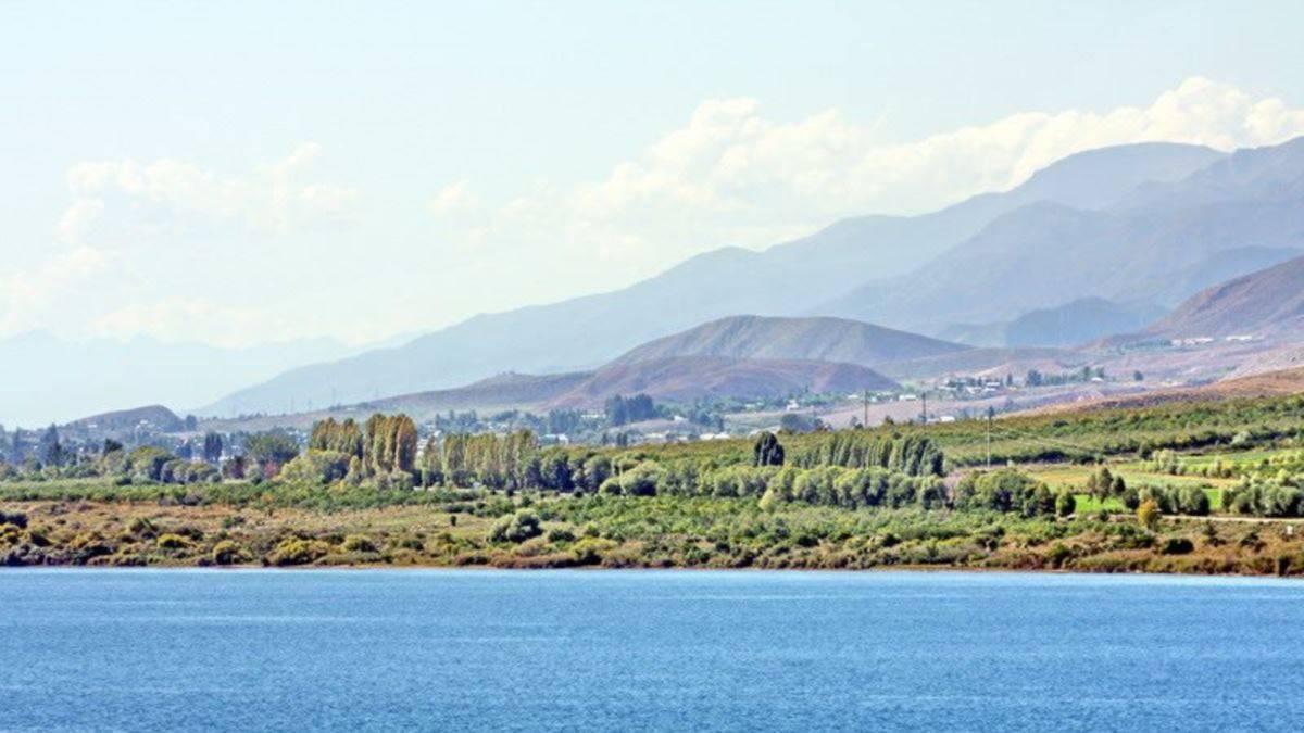 Киргизский коньяк особенности, преимущества и вкусовые качества