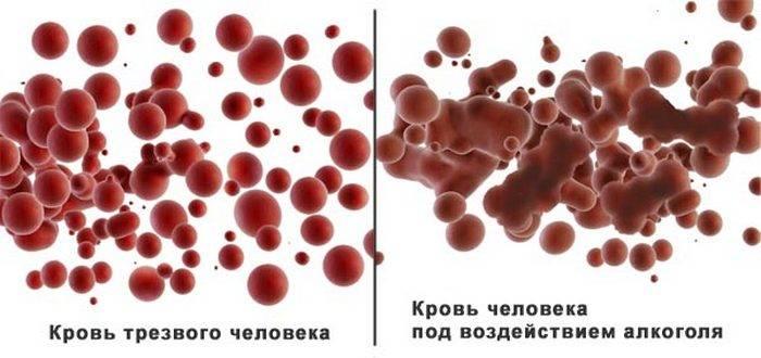Как влияет алкоголь на кровь - чем опасен алкоголь - блог об алкоголизме