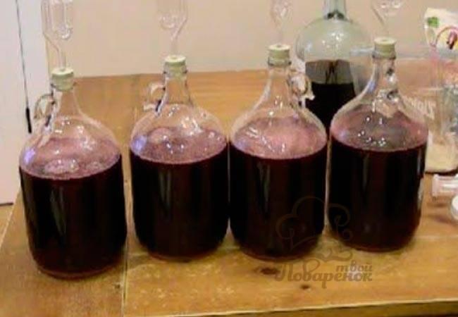 Вино перестало бродить: что делать виноделу