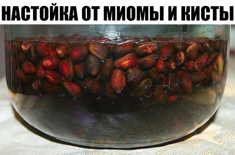 Кедровка – настойка самогона (водки, спирта) на кедровых орешках | алкофан | яндекс дзен