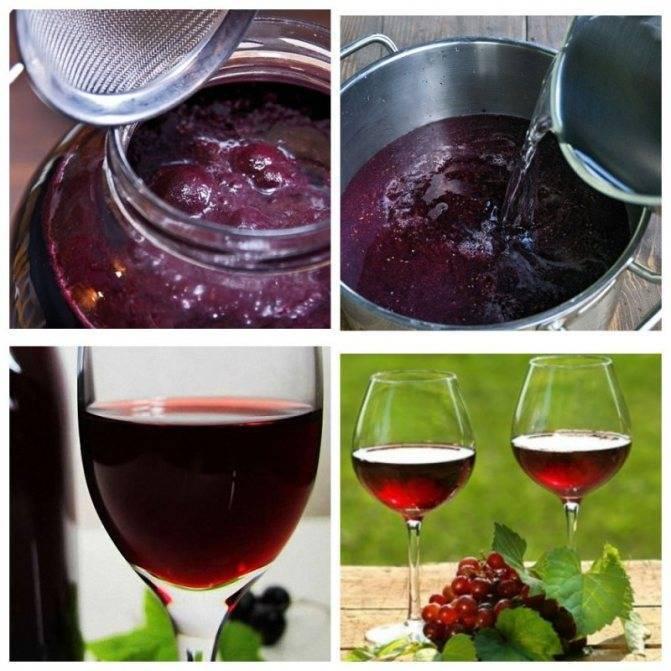 Как сделать вино из компота? – как правильно пить