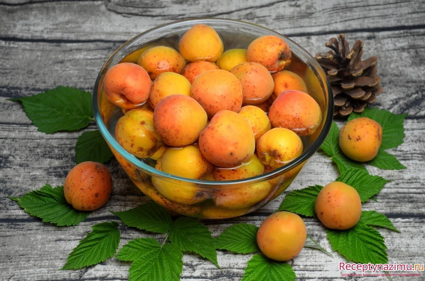 Самогон из абрикосов: рецепт в домашних условиях