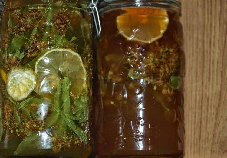Рецепт абсента из самогона в домашних условиях своими руками