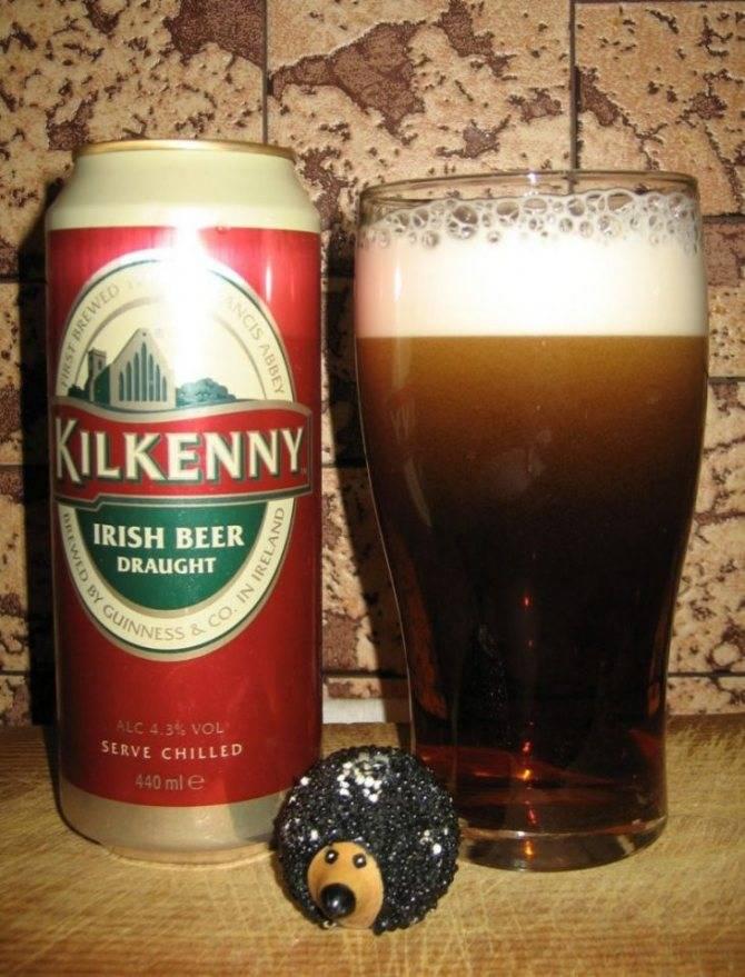 Знаменитое ирландское пиво guinness