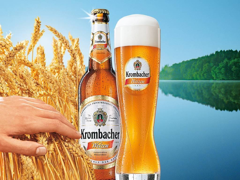 Немецкое пиво: 10 популярных сортов | inshaker | яндекс дзен