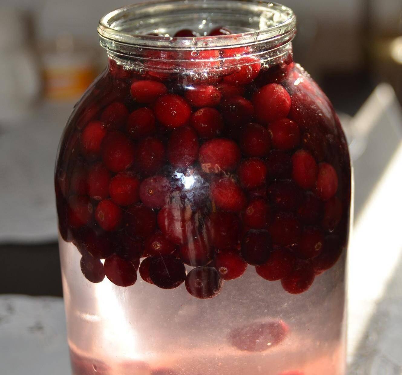 Настойка на бруснике - рецепты приготовления на коньяке, спирту и водке |