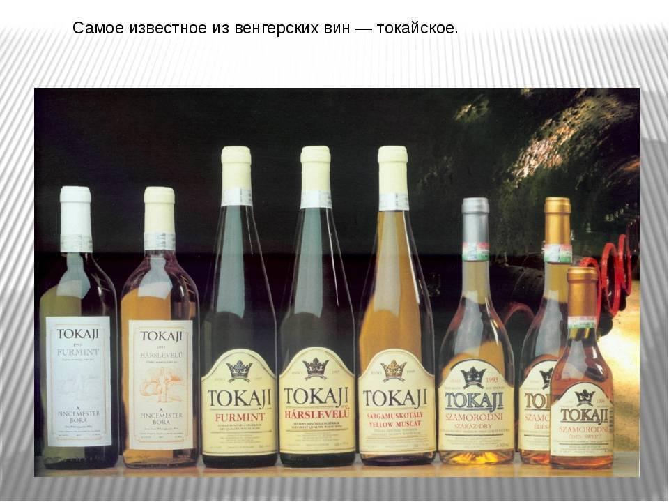 Венгерские вина. вина венгрии