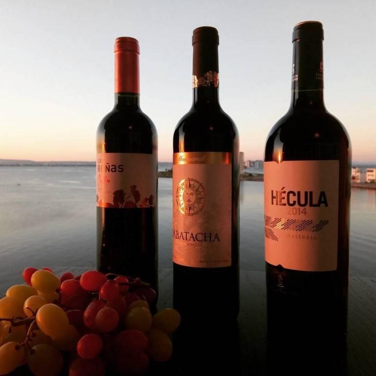 Испания – родина лучшего в мире вина. рейтинги вин 2018 года . испания по-русски - все о жизни в испании