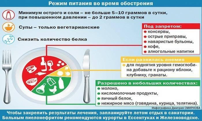Питание при сотрясении головного мозга у взрослого: что можно и нельзя есть, рекомендованные продукты, цели диеты