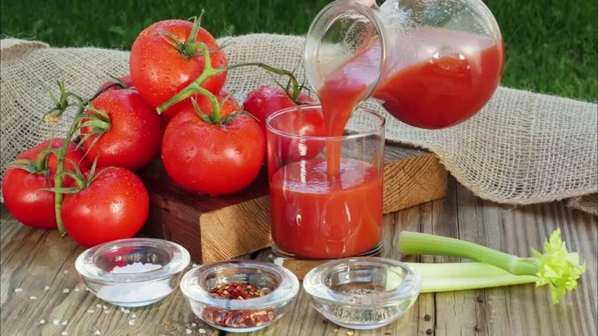 Томатный сок поможет с похмелья - лучшие рецепты от gemrestoran.ru