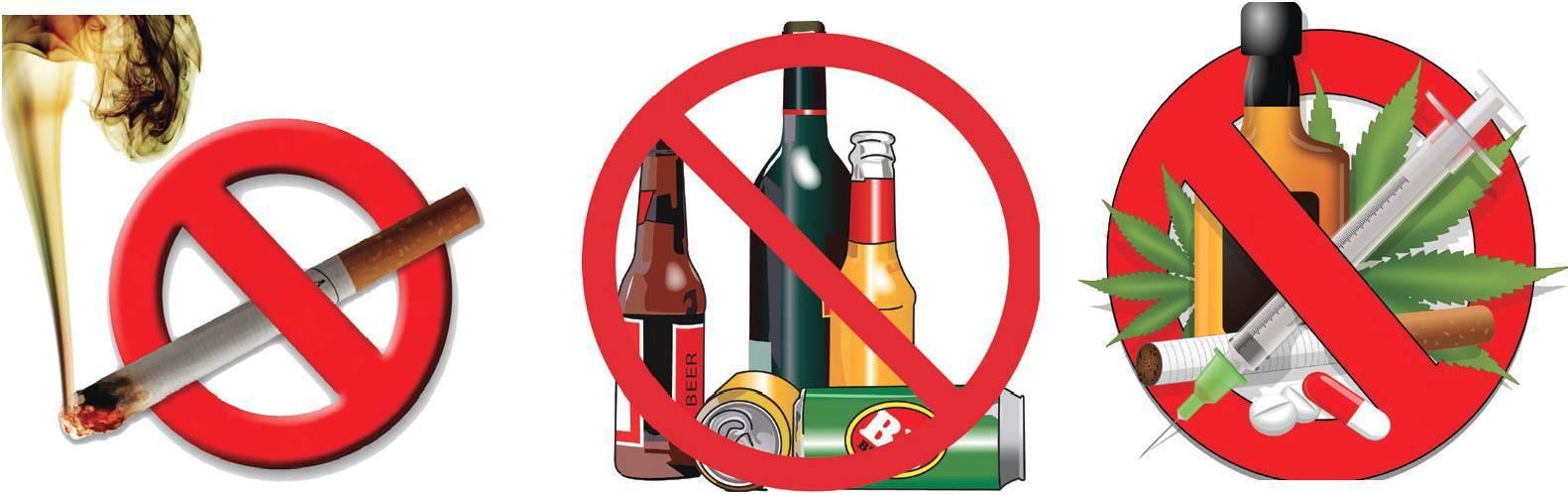 Влияние никотина и алкоголя на организм человека и его здоровье