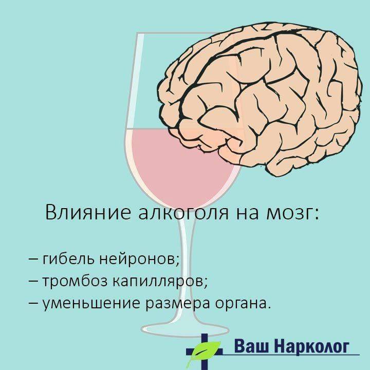 Каков механизм воздействия алкоголя на организм человека