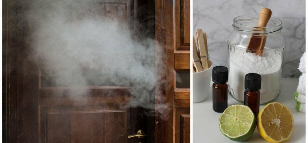 Как избавиться от запаха табачного дыма в квартире или машине?