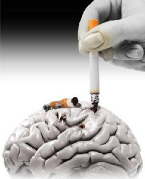 Влияние курения на мозг: как нарушается мозговая деятельность?