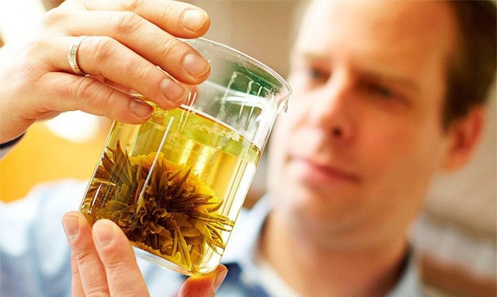 Лечебные свойства и противопоказания золотого корня