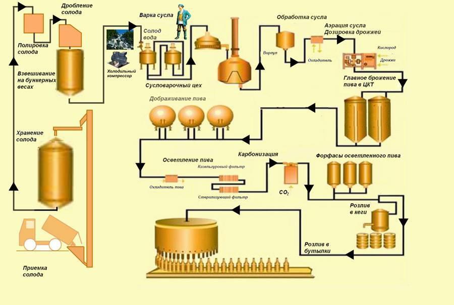 Как делают пиво — технология пивоварения