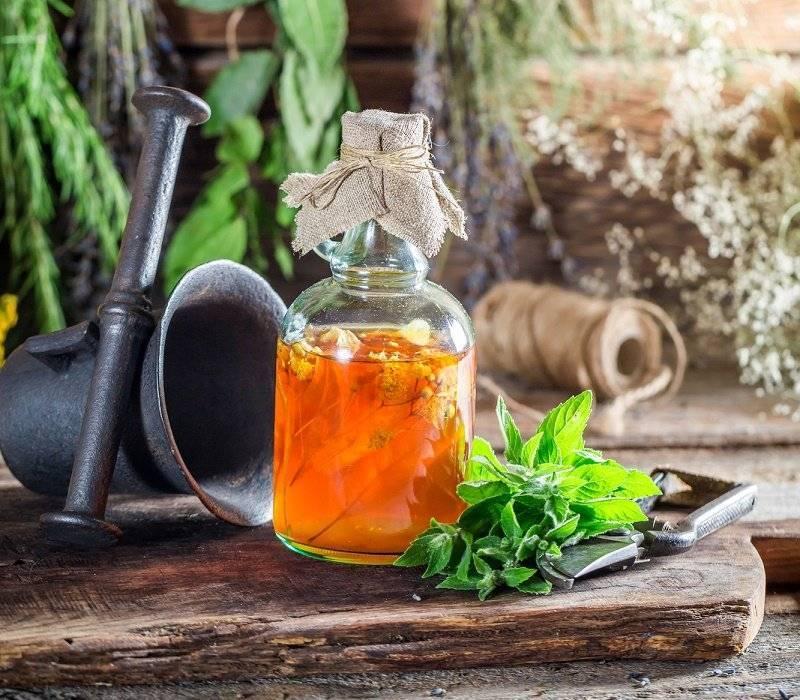 Лечебные настойки на спирту и водке: лучшие рецепты, как сделать лечебную настойку