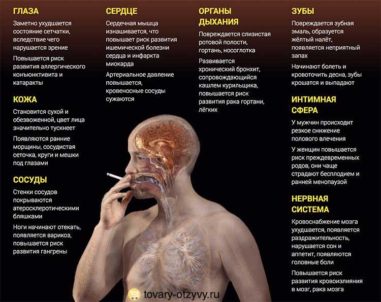 Влияние никотина на мозг