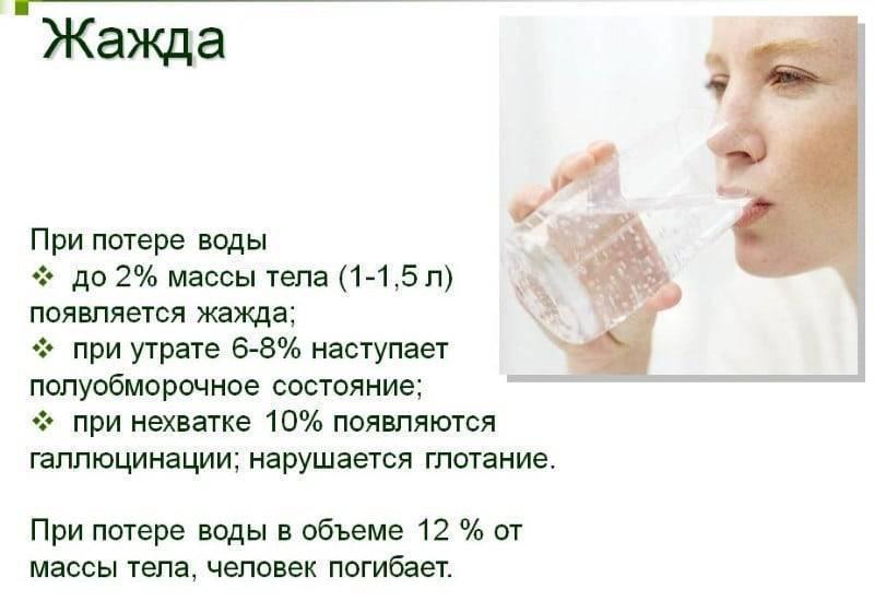 Почему все время хочется пить: самые распространенные причины : labuda.blog почему все время хочется пить: самые распространенные причины — «лабуда» информационно-развлекательный интернет журнал