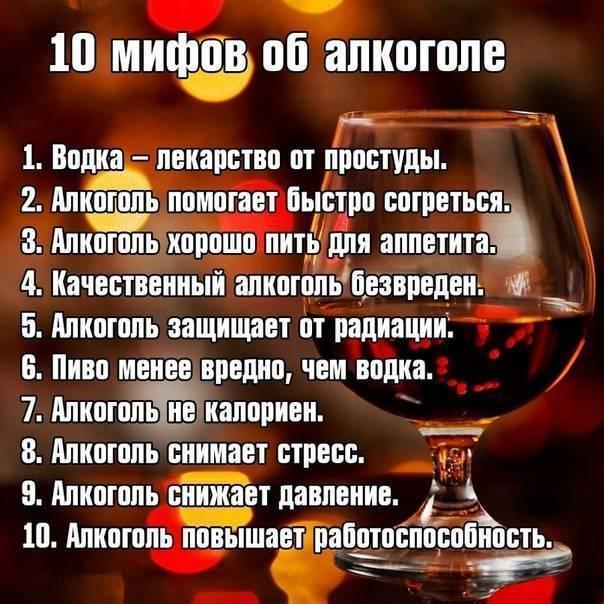 Приколы про алкоголь: анекдоты, шутки, высказывания
