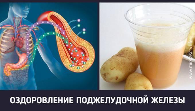 Алкоголь и поджелудочная железа. алкоголь при панкреатите