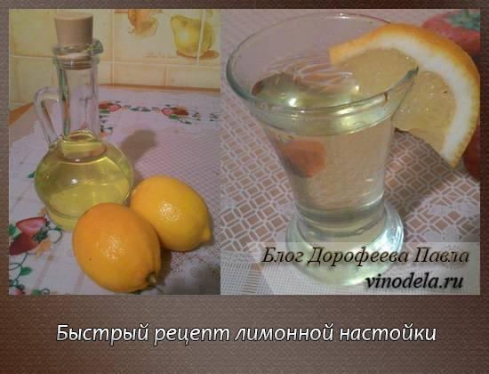 Лимончелло домашний на поварёнок.ру