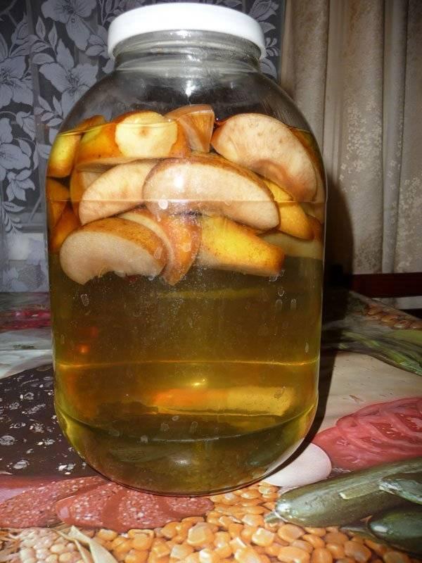 Настойка из яблок на самогоне: секреты приготовления и использования