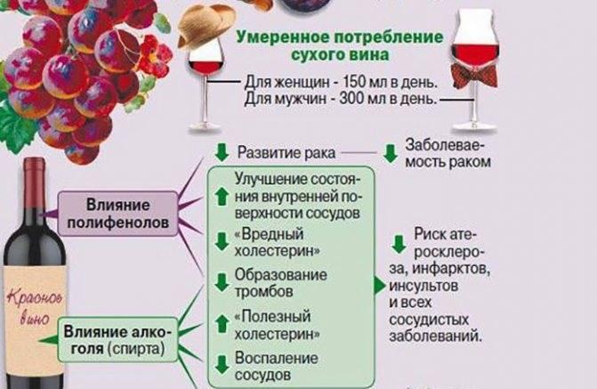 Калорийность вина: сколько калорий в красном, белом, полусладком, сухом, полусухом вине